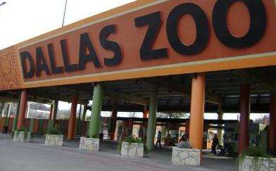 达拉斯动物园